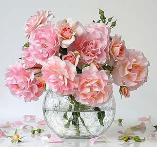 fleuriste-location-vases-gironde